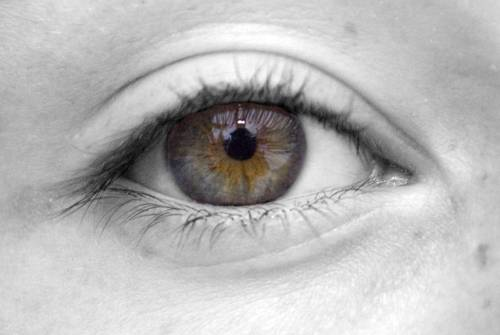 7 Things You Should Know About Eyelid Twitches - Vision North Eyecare