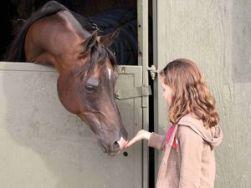 girlandhorse
