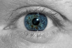eye care center capitola ca