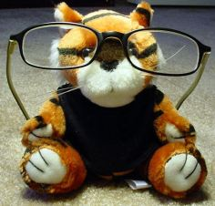 eyeglasses on a toy