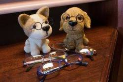 glassesondogs